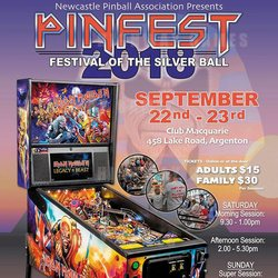 Newcastle Pinfest Banner