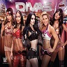 Stern Releasing Limited  Time Only Total Divas WWE Wrestlemania Pinball Translite