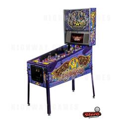 Aerosmith Pinball Limited Edition