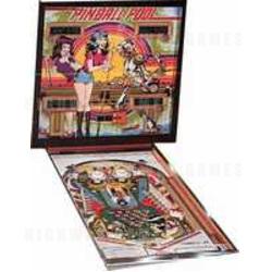 Pinball Pool Pinball (1979)