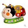 Ladybug Kiddy Ride
