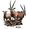 Big Buck HD Wild: Gemsbok