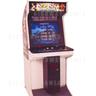 Dead or Alive Arcade Machine