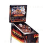 No Fear Pinball (1995)