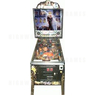 The Addams Family Special Collector's Edition Pinball (1994)